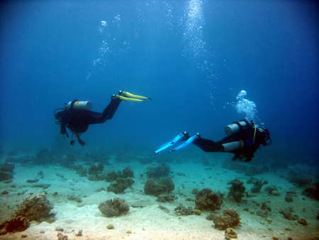 Two divers parting each other underwater