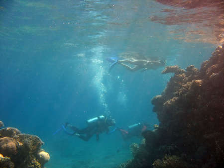 A diver under a snorkeler. shot in the Red Sea Stock Photo