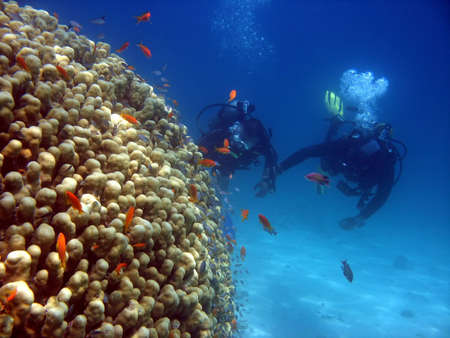 A scuba instructor gives a tourist his first dive