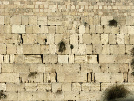 the western wall: The western wall of the temple mount.
