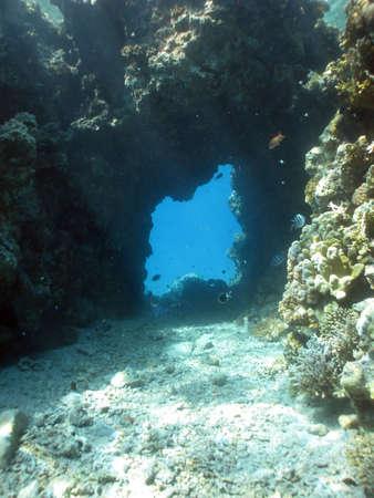 Coral Corridor