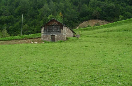 A wooden ,stone house in the middle of green grass.