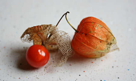 physalis: Golden Berry,Isolated. Stock Photo
