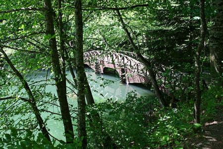 Wooden bridge on green lake,Bolu,Turkey Sevenlakes  photo