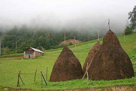 Highlands Of Turkey,Eastern Blacksea Region,Trabzon