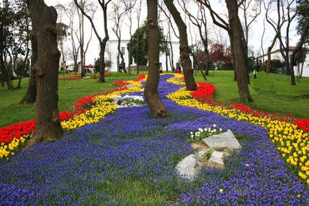 agachado: Internacional Tulip Fiesta, Estambul, Turquía Foto de archivo