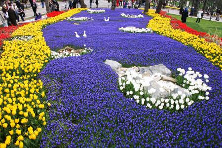 agachado: Internacional Tulip Fiesta, Estambul, Turquía Editorial