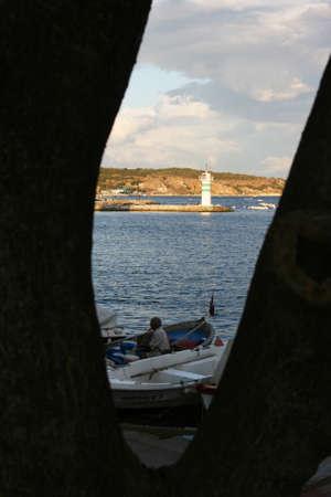 grayling: Fisherman and lighthouse through tree hollow  in Eskihisar,Kocaeli,Turkey Editorial