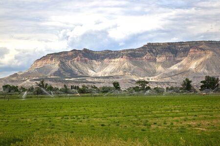 wasatch: Sprinkler Irrigating Farmland at Castle Dale, Utah.
