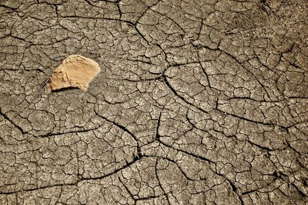 Cracked Mud Representing Drought