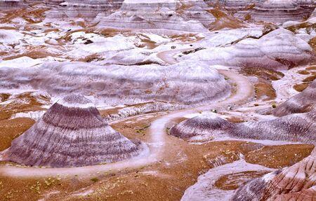 triassic: Petrified Forest National Park Badlands
