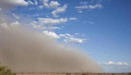 Giant Dust Storm in Arizona