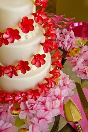 Wedding Cake In Pink and Red photo