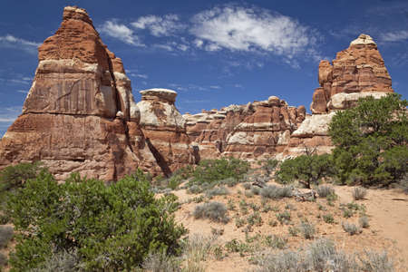 Needles Region of Canyonlands National Park photo