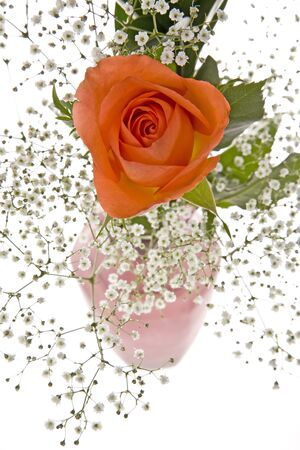 Orange Rose with Babys Breath photo