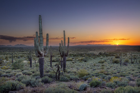 desert sun: Sunet over the Phoenix Valley in Arizona seen from Silly Mountain State Park. Stock Photo