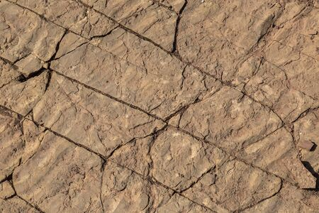 fossilized: Fossilized mud or sand ripples from the bottom of an ancient lake in fractured sandstone useful as background or texture. Stock Photo