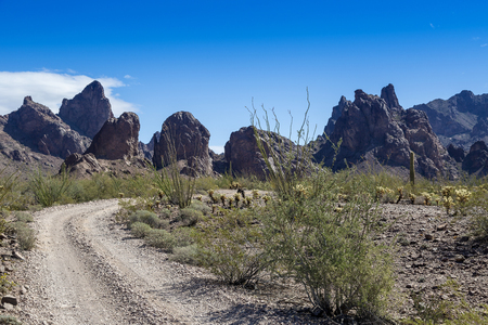 Kofa Queen Canyon Road in the Kofa Mountains Wilderness in Yuma  County in near Quartzite Arizona.