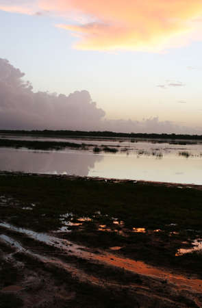 Sunrise reflections on the lake in Crooked Tree, Belize Imagens