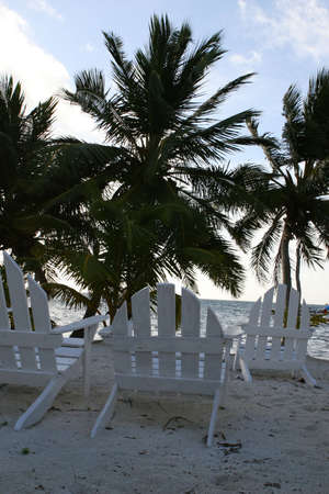 tourism in belize: Empty chairs rest on a tropical beach in Belize. They are waiting for tourists to come and enjoy this tropical paradise