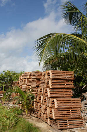 Crap traps lay idle on the shores of the Caribbean photo