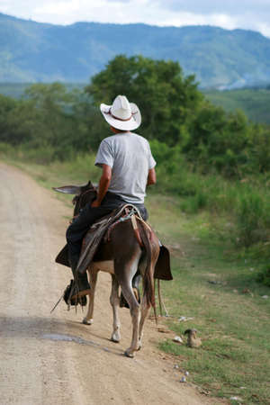 A man rides a donkey down a dirt road in Central America