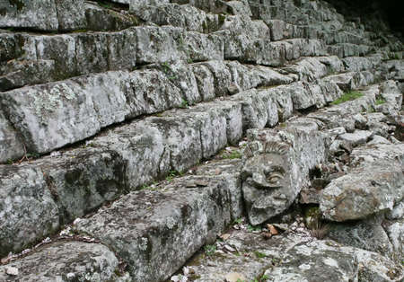 Copan- 온두라스의 사이트에 고대의 단계에 새겨진 머리가 놓여 있습니다. 스톡 콘텐츠
