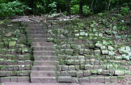 고대 돌 계단 정글에서 리드