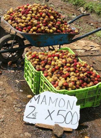 wheel barrel: A roadside stand selling tropical fruit in Costa Rica