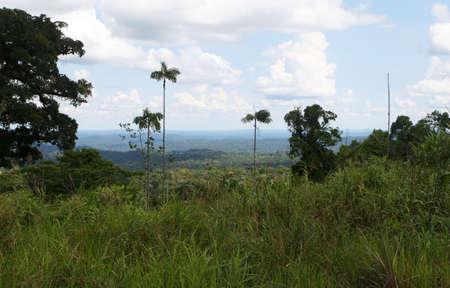 Looking down into the big open Amazon basin in Ecuador