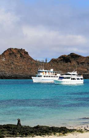 Un mar León juega en el primer plano como dos yates anclados en las claras aguas azules de las Islas Galápagos