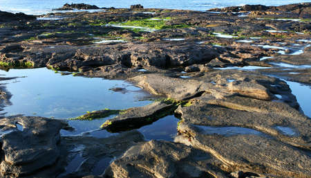 The tide pools around the Galapagos islands filled with water and life photo