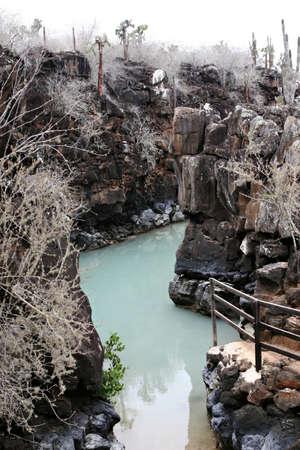 A tidal cove in the galapagos islands of ecuador