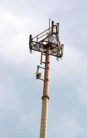 A cell phone tower helps to transmit and receive the radio signals of clients Stock Photo - 4277732