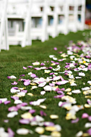 Colorful flower petals are thrown down the aisle during a traditional american wedding ceremony Stockfoto