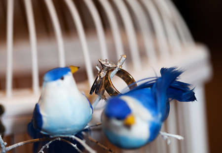Beautiful wedding rings with love birds