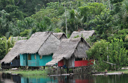 A group of indigenous houses in the Amazon river basin near Iquitos, Peru