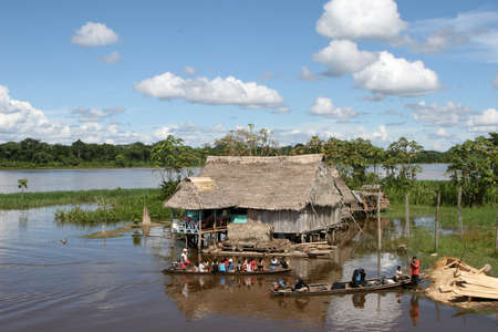 An indigenous house in the Amazon river basin near Iquitos, Peru Editorial