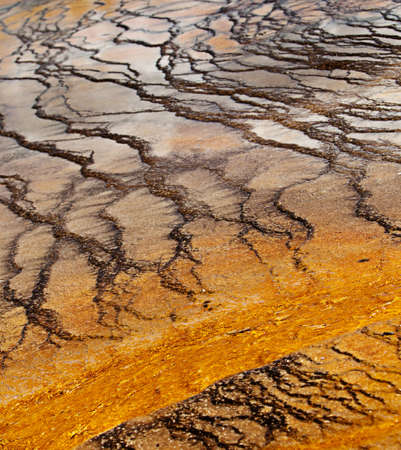 A closeup shot of a geothermal pool in Yellowstone National Park, Wyoming Stock Photo