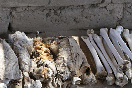 mummification: A pile of human bones in Chauchilla, an ancient cemetery in the desert of Nazca, Peru. The remains of many people, some still with long hair, can be seen.