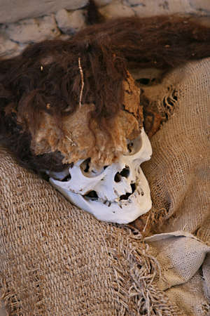 mummification: Skulls and bones in Chauchilla, an ancient cemetery in the desert of Nazca, Peru. The remains of many people, some still with long hair, can be seen.