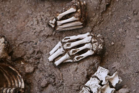 A pile of human bones in Chauchilla, an ancient cemetery in the desert of Nazca, Peru. The remains of many people, some still with long hair, can be seen. photo