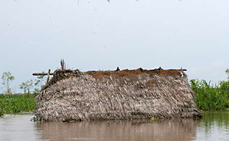 stilts: Houses on stilts rise above Amazon River Basin near Iquitos, Peru Stock Photo