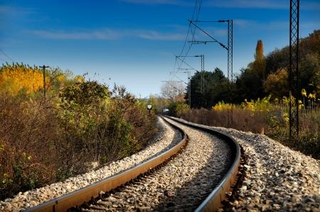 rail cross: Railroad tracks in nature        Stock Photo