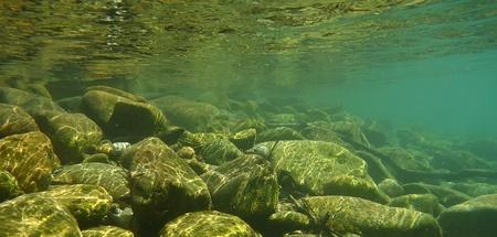 underwater background: Underwater background