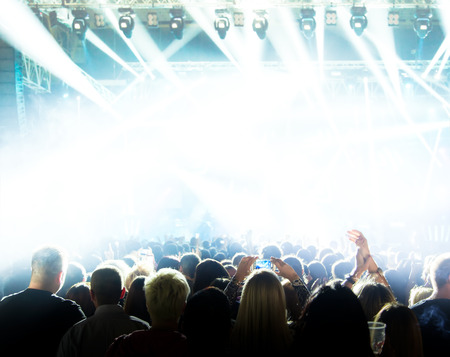 Silhouettes of crowd at a rock concert photo