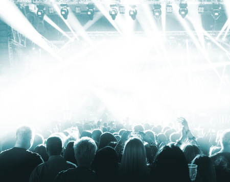 discotheque: Silhouettes of crowd at a rock concert