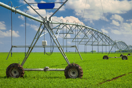 irrigation field: Modern agricultural irrigation system