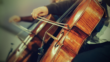 orchestra: Symphony orchestra on stage, hands playing cello Stock Photo
