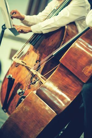 orquesta clasica: orquesta sinfónica en el escenario, las manos tocando el contrabajo acústico